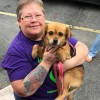 Easily adopt Penelope at Paws Crossed Dog Rescue and be a part of the pet adoption, animal rescue and welfare movement.